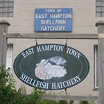 East Hampton Shellfish Hatchery